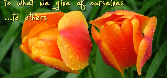 Happiness Depends on What We Give of Ourselves